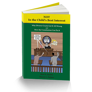 Book: NOT In the Child's Best Interest - Fix Family Courts